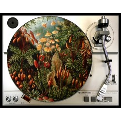 vintage jungle slipmat